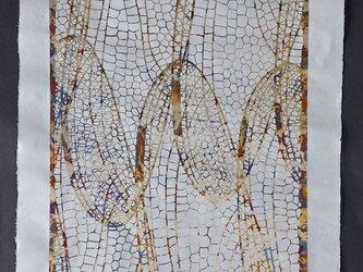 ギルディング和紙 ANIMAS 翅 白の画像