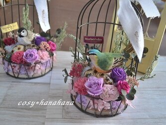 【母の日2020】鳥かご花arrange*オオルリの画像