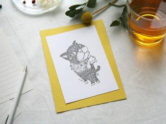 【2枚セット】酒井ひさお「わかってるよね」活版印刷のポストカード・グリーティングカード/猫・ネコの画像