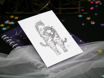 【2枚セット】酒井ひさお「星潤むときも、雨騒めくときも」活版印刷のポストカード・グリーティングカード/猫・ネコの画像