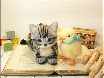 羊毛フェルト 猫 鳥 アメリカンショートヘアの子猫 と ヒヨコ 猫フィギュア 鳥フィギュア アメショーの画像