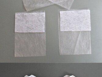 銀イオン不織布と酸化チタフィルター内蔵マスク2枚セットの画像
