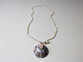 糸編みネックレス 貝殻1の画像