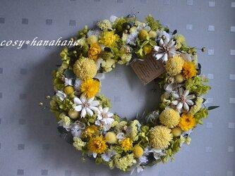 【母の日2020】たんぽぽ野原wreathの画像