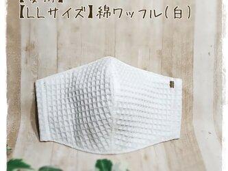 【夏用】(LL)綿ワッフル(白×GR)*ワイヤ入立体マスクの画像