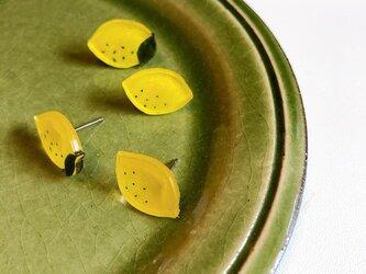レモンのピアス/プラバンの画像
