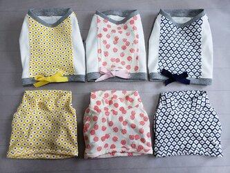 犬服 S様オーダーメイド:ケアウェアTシャツ&アンダーウェアセットの画像