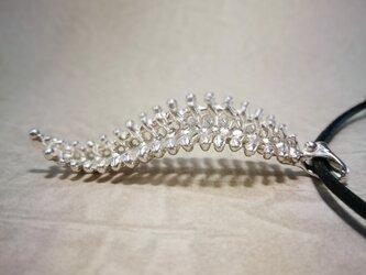 ネックレス 羊歯(925銀)の画像