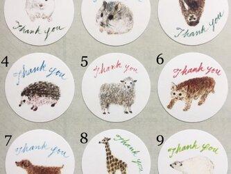 選べる動物サンキューシール 48枚の画像
