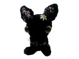 手作りネコちゃんのあみぐるみM002 手編みハンドメイド人形の画像