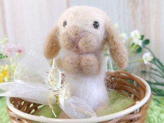 【セール】羊毛うさぎ*Sサイズ*お祈り*クリームの画像