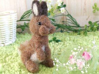【セール】羊毛うさぎ*Sサイズ*たっち*チョコレートの画像