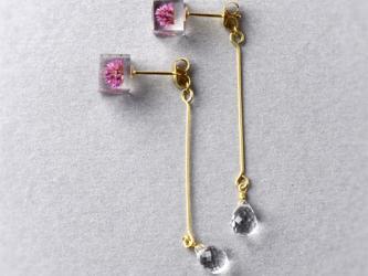 宝石質AAAクォーツとヒメツルソバのピアス(天然石, 誕生石, レジン, ステンレス, 送料無料)の画像