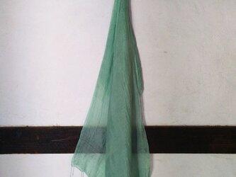 浅緑 藍生+ヨモギの画像