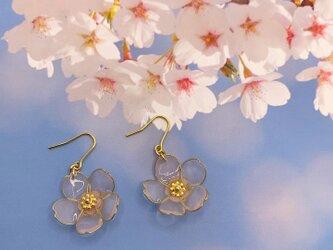 桜の花のピアス/イヤリング2の画像