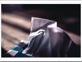 スチル・ライフ - Tissue -の画像