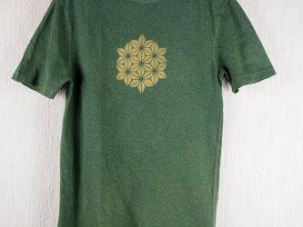 草木染 ヘンプ/オーガニックコットンのTシャツ  麻の葉 緑 メンズMサイズの画像