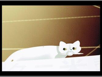 スチル・ライフ - 反転Cat -の画像