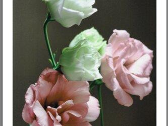 Tenki 2010 - Flowers -の画像