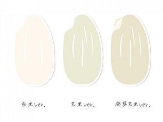 おこめっせーじハガキ【3枚入り 400円】ポストカードの画像