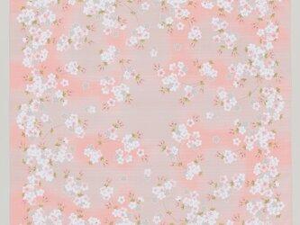 風呂敷 ふろしき 弁当箱包み 手作りマスク 宇野千代 さくら 桜柄 あけぼの桜 綿100% 105cm幅 オレンジ 春贈答品の画像