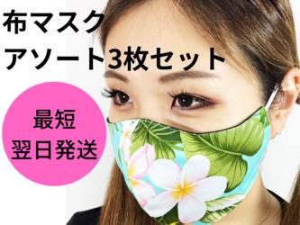 【即納】3枚セット 立体布マスク/ハワイ柄アソート/コットン100%/サマーマスク/夏の画像