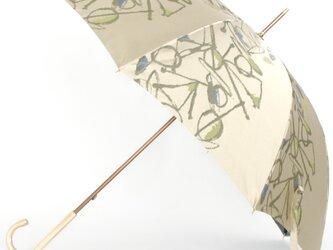 【晴雨兼用傘】 Aneqdot グリーンの画像
