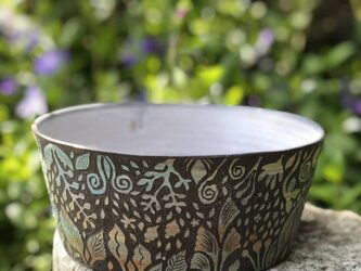 [as is ]  Kakiotoshi Large bowl -夜明けの森の画像