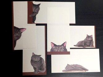 一筆便箋「黒猫純喫茶」の画像