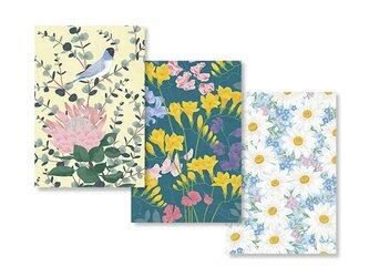HEY DAY ポストカード bloomの画像