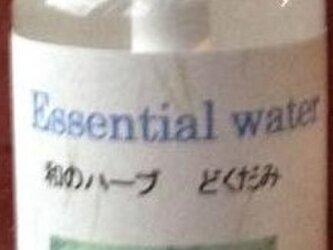 エッセンシャルウオーター・ドクダミ芳香水 100mlスプレーの画像