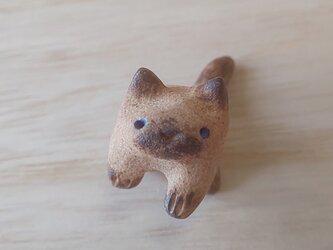 ちび猫=^人^=シャム猫の画像