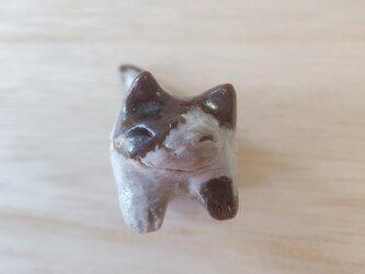 ちび猫=^人^=花ぶち猫の画像