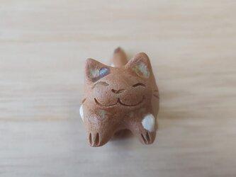 ちび猫=^人^=水玉三毛猫の画像