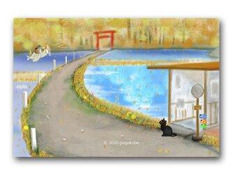 「はりねずみくん、故郷に錦を飾る^^」 ほっこり癒しのイラストポストカード2枚組 No.1036の画像