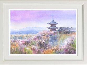 水彩画原画 春の清水寺の画像