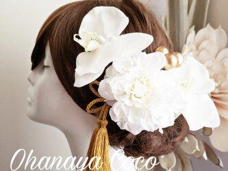 hirahira胡蝶蘭とwhite系ダリアの髪飾り6点Set No736 結婚式の画像