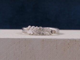 葉とダイヤモンドのリングの画像
