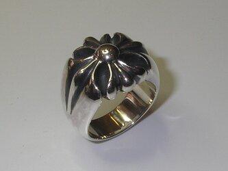 指輪 MR 0024の画像