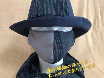 遠州綿紬の布マスク ふじねず×海風の画像
