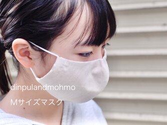 立体マスク Mサイズの画像