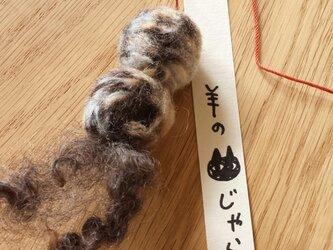 羊の猫じゃらし#09の画像