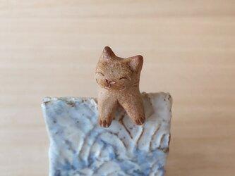 引っかけ猫=^人^=シャム猫の画像