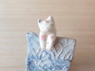 引っかけ猫=^人^=桜猫の画像
