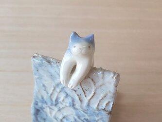 引っかけ猫=^人^=ふんわり青猫の画像