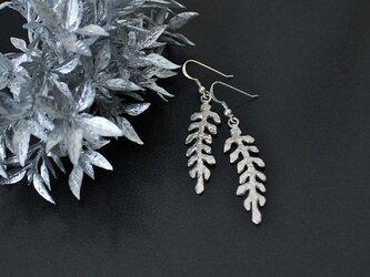 Frozen leaves ピアスsilver925の画像