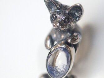 デュモルチェライトインクオーツ デボンレックス 猫リングの画像