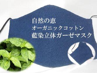 草木染 オーガニックコットン 立体 ガーゼ マスク 藍の画像