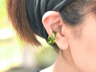 森の散歩道 ヤマゴケのイヤーカフ【片耳】の画像