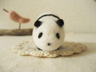 羊毛パンダの画像